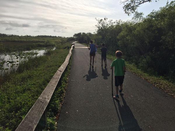 AhingaTrail_FollowGreg_Everglades_HikingTrail
