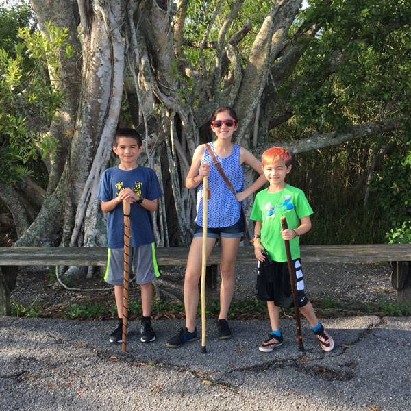 AhingaTrail_FollowGreg_Everglades_walkingsticks