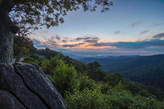FollowGreg_ShenandoahNP_Feature