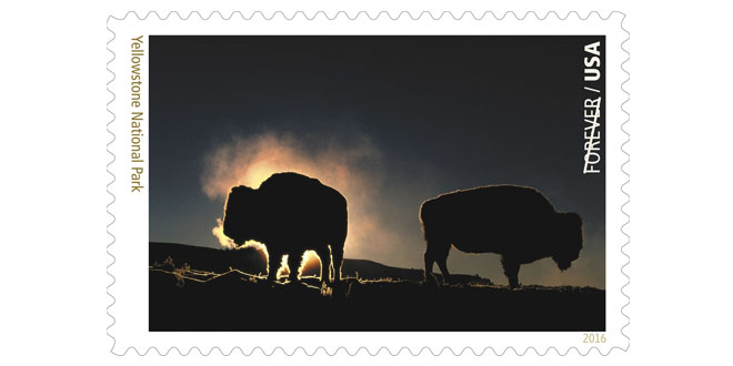Image Source USPS : Yellowstone National Park