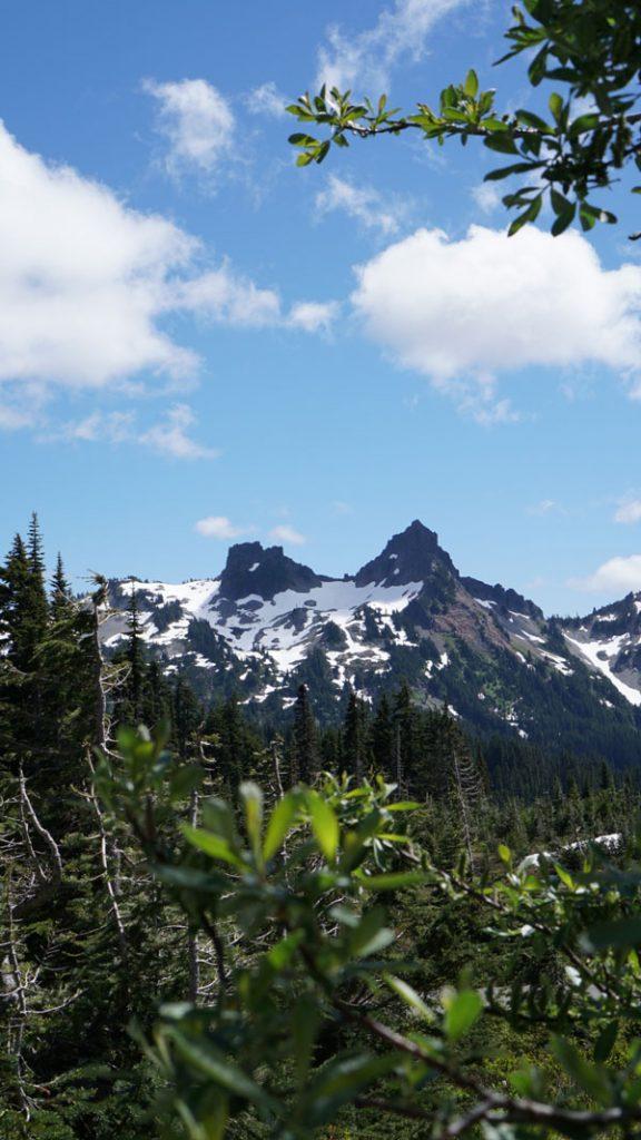 FollowGreg_SkylineTrail_MtRainier_Mountains